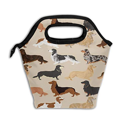Long Haired Dachshunds Dogs Reusable Insulated Lunch Bag Cooler Tote Box with Zipper Closure for Woman Man Work Pinic Or Travel (Haired Dachshunds Long)