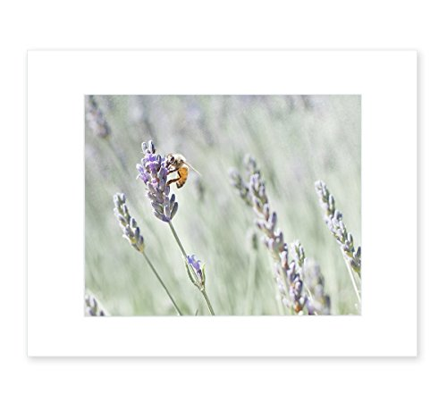 Lavender Wall Art Rustic Floral Wall Decor, Farmhouse Style Picture of Honey Bee, 8x10 Matted Photography Print,Lavender for Bees