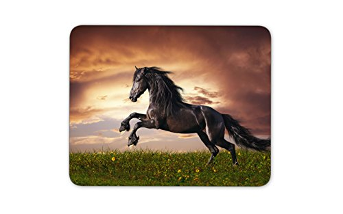 Beautiful Black Friesian Stallion Running Gallop On The Field On Sunset Mouse Pad Gaming Mouse Pad Mousepad Nonslip Rubber Backing Dimension  9 4  X 7 9