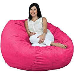 Fugu 4 Foot Bean Bag Chair, Double Layered Construction