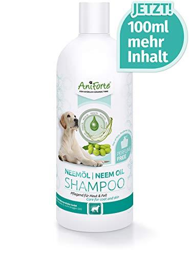 AniForte Neemöl Shampoo für Hunde 500ml - Hundeshampoo parfümfrei, Pflegeprodukt bei Juckreiz, Hautfreundlich, Pflegend und leicht kämmbar, Angenehm im Geruch