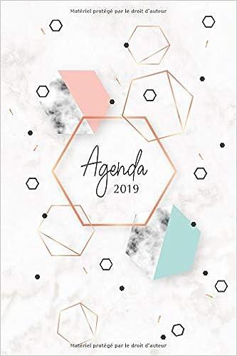 Agenda 2019: Agenda Janvier à Décembre 2019, Semainier ...