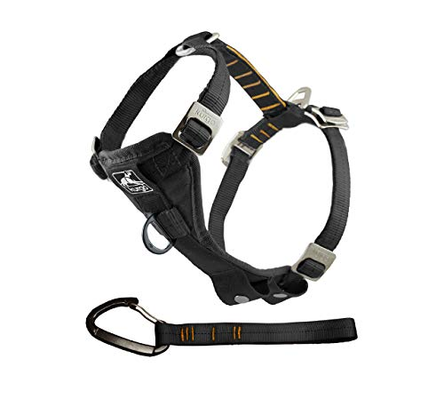 Kurgo Dog Harness | Car Harness for Dogs | Large | BlackPet Safety Seat Belt | Certified Crash Tested Harness | Car Seatbelt | Tru-Fit Enhanced Strength Style (Car Harness And Seat Belt Dog)