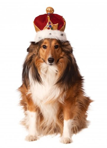 Rubies Costume Company King's Crown Pet Costume Accessory, Small/Medium