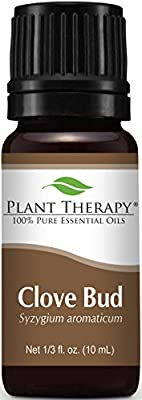 Plant Therapy Clove Bud Essential Oil | 100% Pure, Undiluted, Natural Aromatherapy, Therapeutic Grade