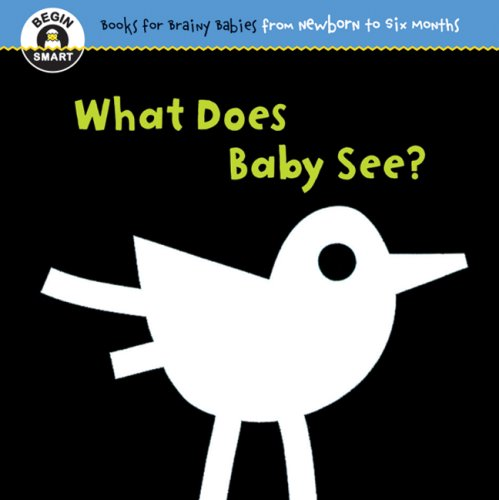 (Begin Smart: What Does Baby See? For Ages 0-6 Months)