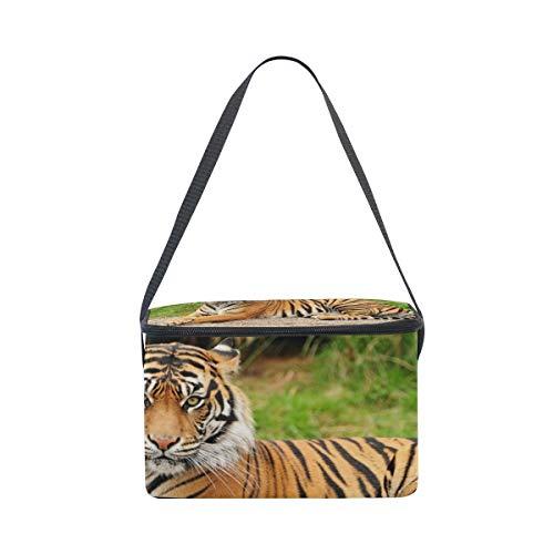 Lunchbox of Lunch Bag for Shoulder Cooler Royal Strap Tiger Picnic Portrait Bengal EETwpqP