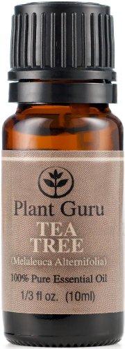 Tea Tree (чайное дерево) Эфирное масло. 10 мл. 100% Pure, неразбавленном виде, терапевтической степени чистоты.