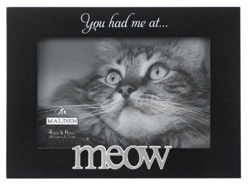 Malden International Designs Expressions You Had Me at Meow Black Wood Picture Frame, 4x6, Black ()