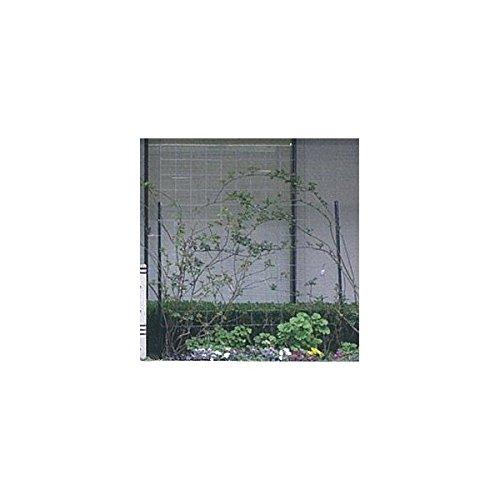 近江屋ロープ カラマリーナVG/メッキパネル 【緑化 バラ用フェンス 柵】 B00GRW48MQ 18800