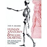 Human Anatomy and Figure Drawing : The Integration of Structure and Form, Kramer, Jack, 0442208227