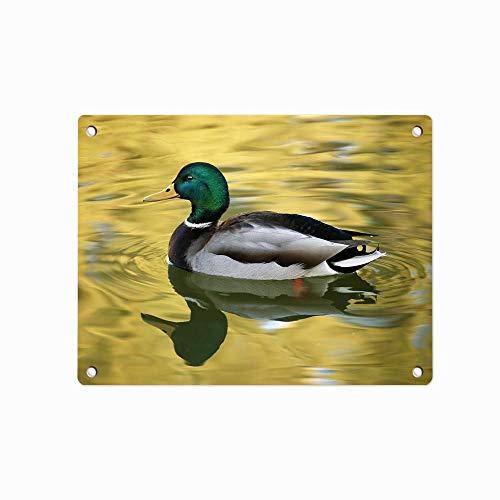 (Golden Pond Duck Metal Tin Sign, Tin Poster, Wall Ornament Coffee Decor Art, Size 12