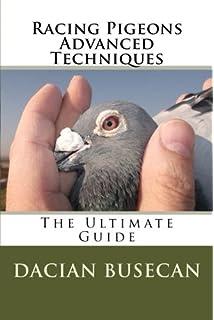 Racing Pigeons Advanced Techniques: Feeding Secrets: Dacian Busecan
