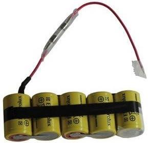 Electrolux – Batería para aspiradora Electrolux: Amazon.es: Hogar