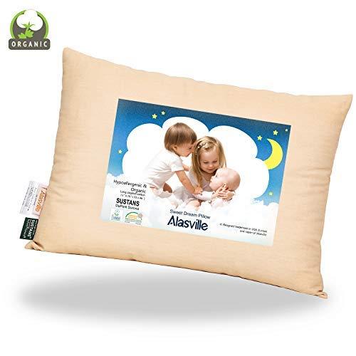 Organic Toddler Pillow Nursery Pillow Cotton Kid Pillow Organic Alasville Hypoallergenic Insert Washable Baby Pillow…