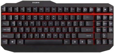 Zalman ZM-K500 - Teclado (USB, PC/server, Estándar, Derecho, Negro, ABS sintéticos)