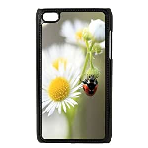 DIY Lady Bugs Daisy Flowers iPod Touch 4Case, Lady Bugs Daisy Flowers Custom Case for iPod Touch4at lzzcase