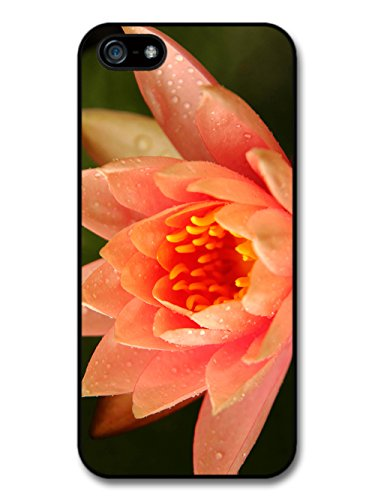 Cute Beautiful Lotus Flower Pink Photography Wild Nature case for iPhone 5 5S