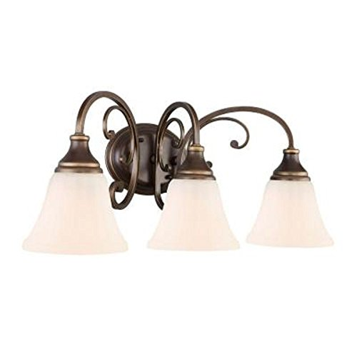 - Hampton Bay Somerset 3-light Bronze Vanity