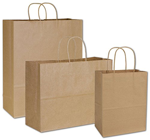 (Deluxe Small Business Sales 15-100-8 3 Assorted Sizes Paper Shoppers, Kraft )