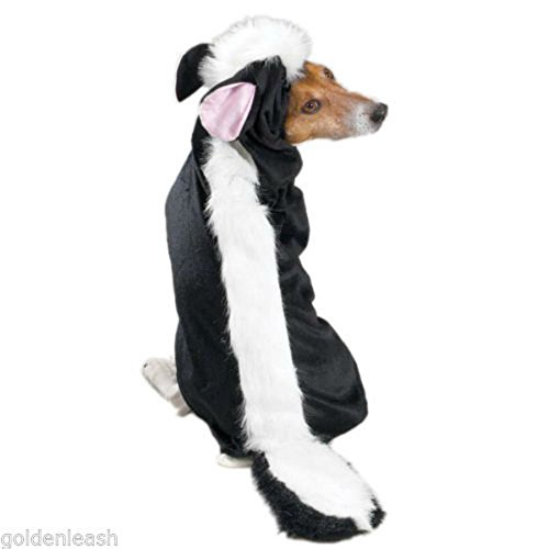 Lil' Stinker Skunk, USA Seller, Dog Halloween Costume, All Sizes Party Costumes (Medium) - Skunk Costumes For Dog