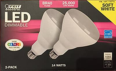 Feit BR 40 Dimmable LED Light Bulb 2-Pack (75W Replacement)