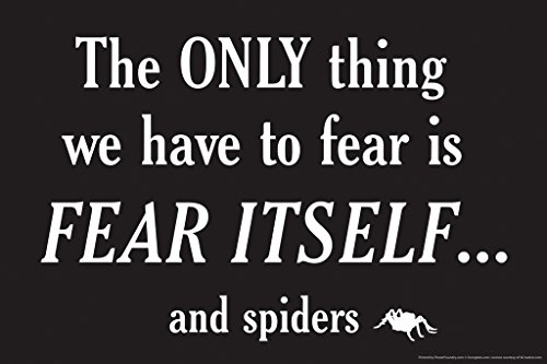 The Only Thing We Have To Fear Is Fear Itself ... And Spiders Humor Poster 18x12 (Sassy Spider)