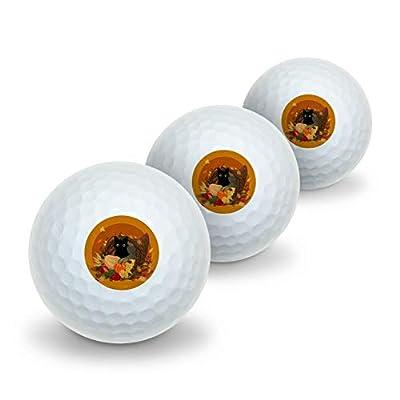 GRAPHICS & MORE Thanksgiving Black Cat Hiding in Cornucopia with Pumpkins Novelty Golf Balls 3 Pack