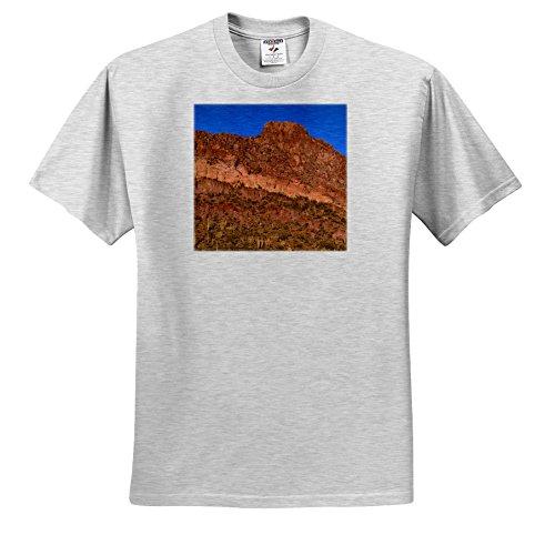 Danita Delimont - Deserts - USA, Arizona, Diablo Mountains Tower Desert Landscape. - T-Shirts - Adult Birch-Gray-T-Shirt Large (TS 258697 20)