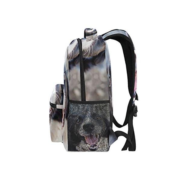 DXG1 Zaino Donna Uomini Ragazzo Ragazzo Borsa Scuola Animale Canine Portafoglio Viaggio College Spalla Grande Capacità… 4 spesavip