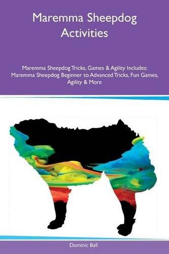 Maremma Sheepdog Activities Maremma Sheepdog Tricks, Games & Agility Includes: Maremma Sheepdog Beginner to Advanced Tricks, Fun Games, Agility & ()