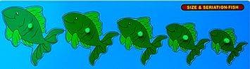 Little Genius Fish Seriation Big with Knob, Multi Color