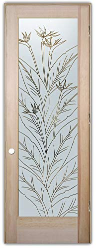 Interior Glass Door Sans Soucie Art Glass Bird of Paradise Pinstripe