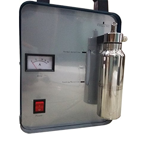 Canty Wang® Nueva oxy-hydrogen Generador de Agua Soldador acrílico Llama Pulido linterna Soldador 150L 110 V o 220 V: Amazon.es: Amazon.es