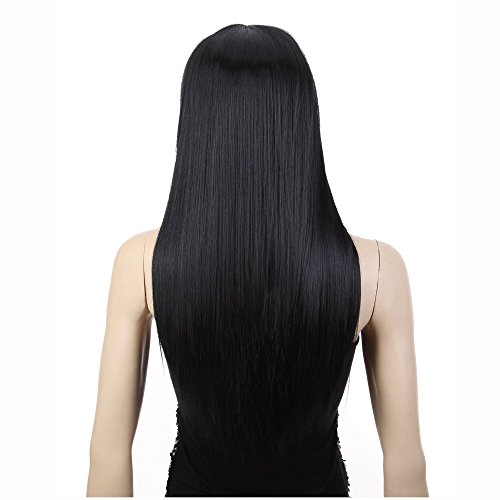 [AGPtek® 24 inch Straight Long Beautiful Black Wig Hair] (Asian Wig)