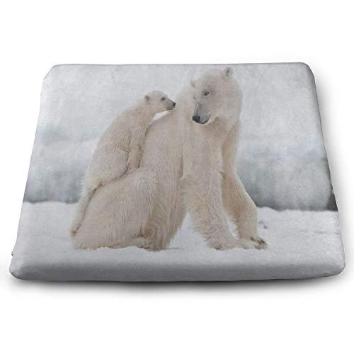 Seat Cushion Snow Snowflake Polar Bear Chair Cushion Amazing Offices Butt Chair Pads for -