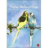 Wellensittiche 2020 - Kalender A4