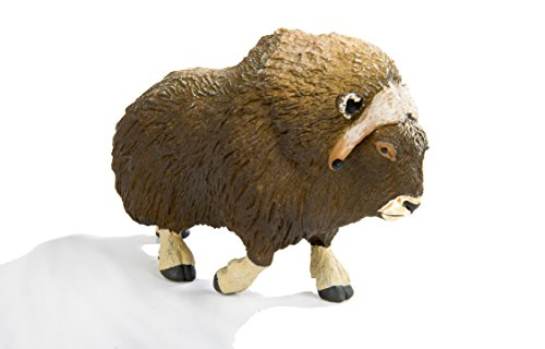 Safari Ltd. North American Wildlife - Muskox - Quality Construction from Phthalate, Lead and BPA Free Materials - for Ages 3 and Up