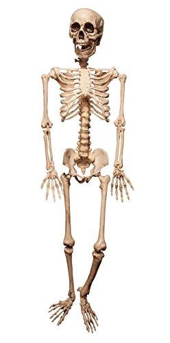 Largemouth 4 Ft. Scary Hanging Poseable Skeleton (Bone White)]()