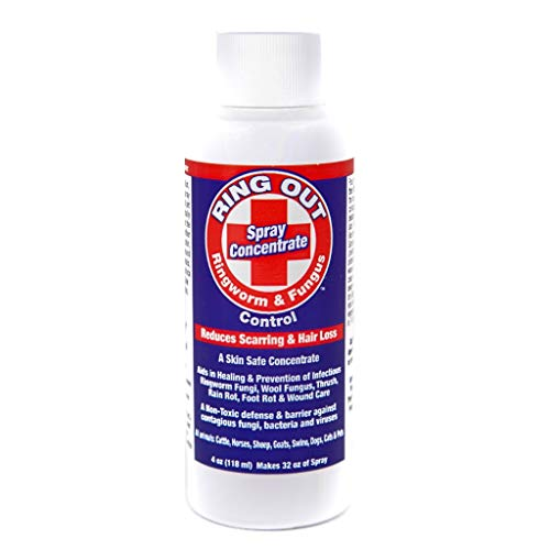 Ring Out - Ringworm & Fungus Control. Treatment and Prevention for Cats, Dogs, Sheep, Goats, Cattle, Horses, All Pets and Livestock. 4 oz. Concentrate Makes 32 oz. Spray.