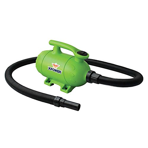 XPOWER B-2 2 HP Pro-At-Home 2-in-1 Pet Force Dryer and Vacuum, Green