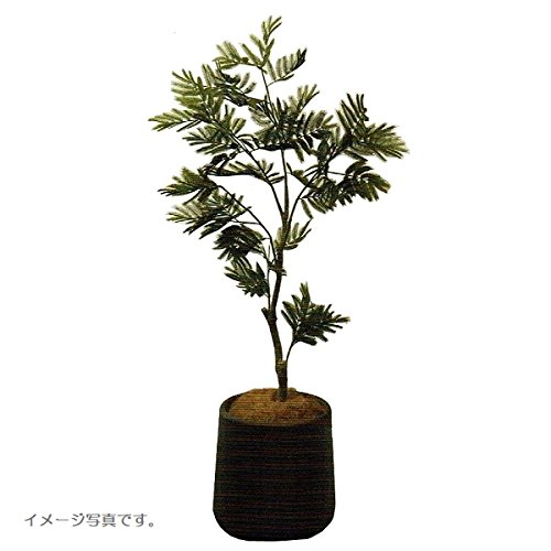 人工観葉植物 アーティフィシャルグリーンアレンジエバグリーン 鉢付き 幅85cm rg-010 B074FXJ727