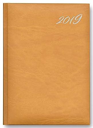 Agenda 2019 15x21 sidney surtido 5 col: Amazon.es: Oficina y ...