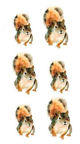 SanerLian Set of 5 Waterproof Temporary Fake Tattoo Stickers Watercolor Squirrel Cartoon