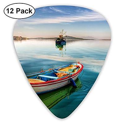 351 Shape Classic Guitar Picks Sea Boat Painitng Plectrums Instrument Standard Bass 12 Pack