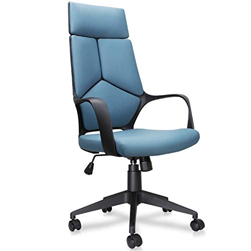 Becozier Mordern Office Chair, Computer Desk Task Seat with High Back Detachable Headrest, Adjustable Height, Mesh Cushion for Home and Office Conference Room Unique Design Blue