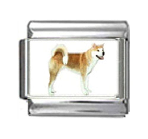 - Stylysh Charms Akita Dog Photo Italian 9mm Link DG027