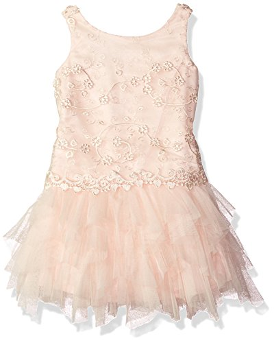 Biscotti Little Girls Sweet Soiree Netting Dress With Embroidered Bodice, Champ, 7 by Biscotti