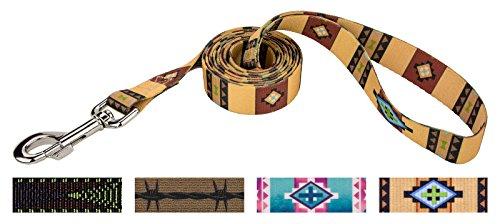 Country Brook Design 1 Inch Native Arizona Dog Leash - 6 Foot