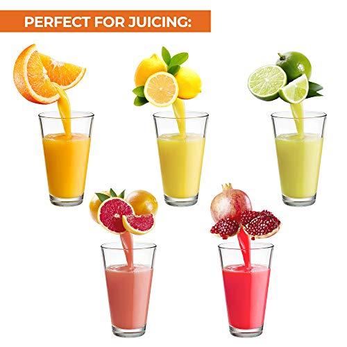Zulay Professional Citrus Juicer - Manual Citrus Press and Orange Squeezer - Metal Lemon Squeezer - Premium Quality Heavy Duty Manual Orange Juicer and Lime Squeezer Press Stand, Black